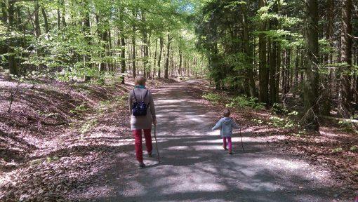 Mámival az erdőben